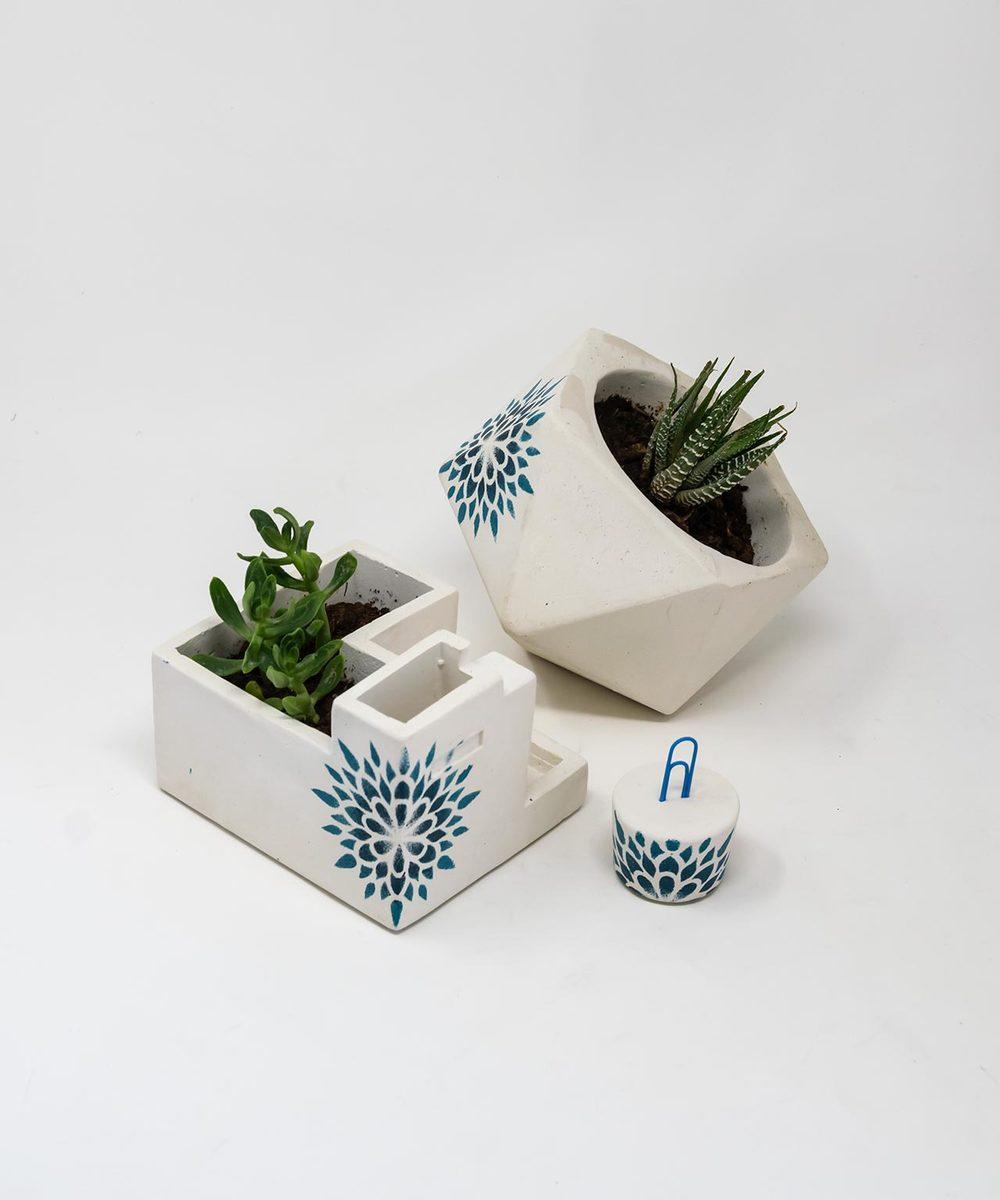 طقم أواني نباتات مع حامل كروت لون أزرق