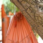 حافظة من الأورجانزا والحرير
