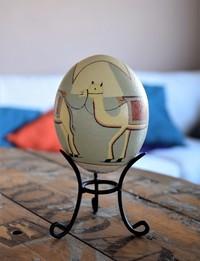 بيض نعام :القاعدة البدوية لركوب الجمال
