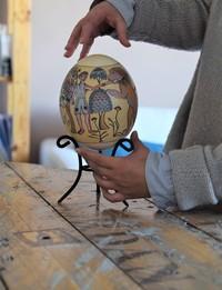 Ostrich Egg: Struggle for Survival