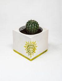 Square Plant Pot - Yellow Decorations