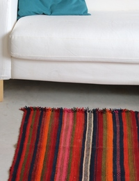 Vertical-Striped Carpet: Multicolor